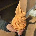 道の駅 にちなん日野川の郷のトマトソフトクリームと焼き芋が美味すぎた件