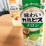 夏の新作『味わいカルピス メロン』飲んでみました!ついでに『フルーツミックス』も飲み比べです
